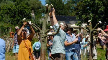 Jubilo inspiratio bij Creapoelka beeldhouwen in hout en steen.